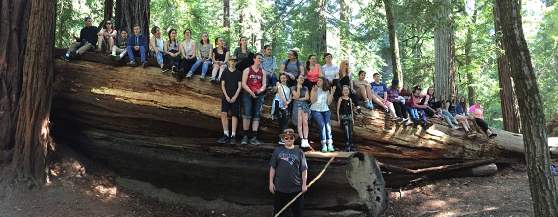 Falmouth High School (Massachusetts) Choir singing to the squirrels in the middle of the forest at Big Basin Redwoods State Park in California. This is one of my favorite moments on all of my trips!