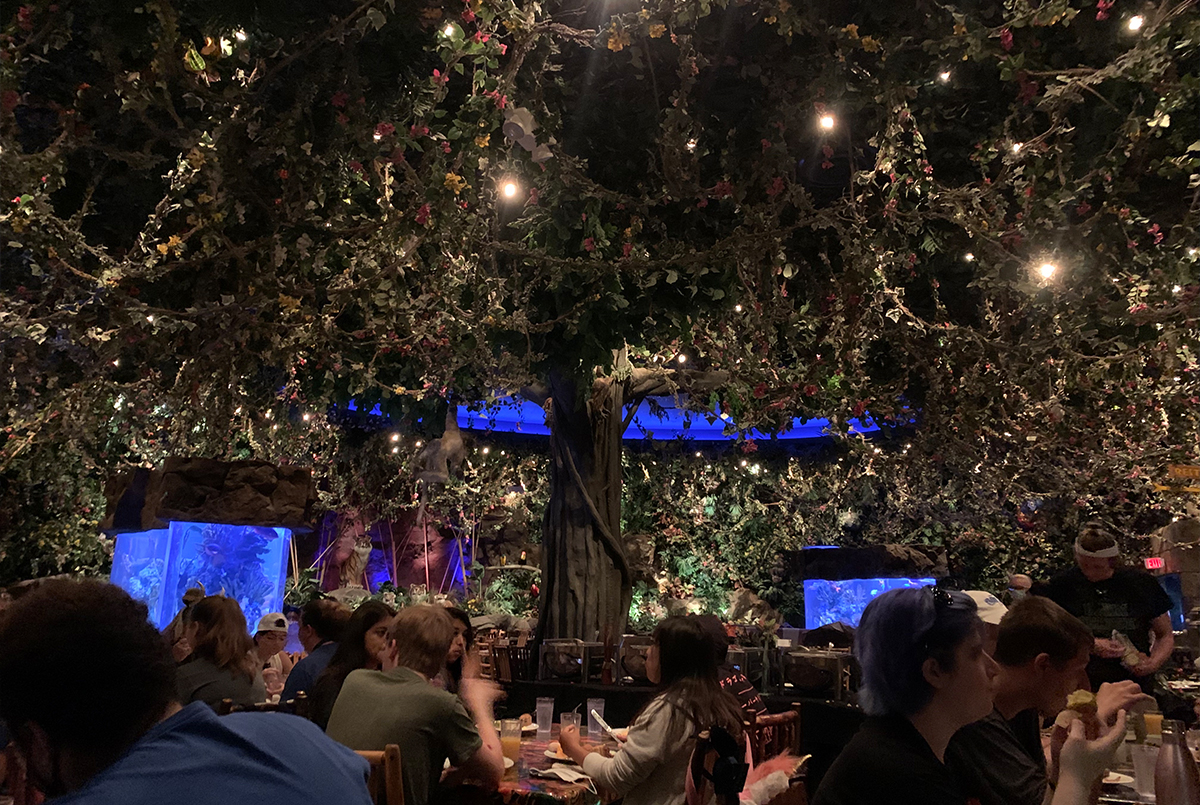 Rainforest Café is a great place for breakfast in a cool surrounding